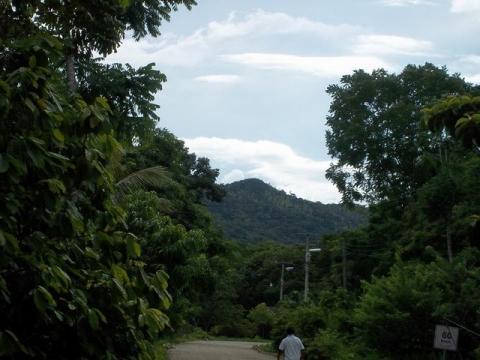 Sistema biométrico para la planeación del manejo forestal sustentable de los ecosistemas con potencial maderable en México.